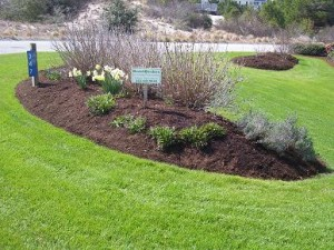 Chesterfield VA Lawn Care & Landscaping Spring Special   Picture Perfect Lawn Maintenance (804) 530-2540