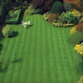 Lawn Care 14