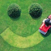 Picture Perfect Lawn Maintenance | Fertilization Experts | (804) 530-2540
