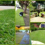Chesterfield Lawn Maintenance
