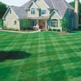 Lawn Care 35