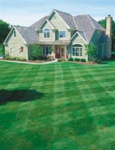Chesterfield VA Lawn Care Special| Picture Perfect Lawn Maintenance (804) 530-2540