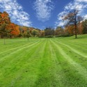 Chesterfield VA Lawn Care | Picture Perfect Lawn Maintenance