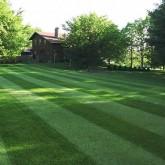 Lawn Care 47