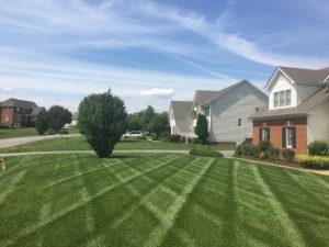 Chesterfield VA Lawn Care & Landscaping | Picture Perfect Lawn Maintenance | (804) 530-2540