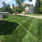 Mowing and Fertilizer by Picture Perfect Lawn Maintenance Chesterfield VA (804) 530-2540